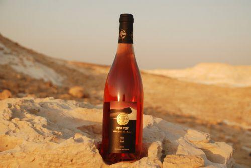 Negev Desert – vins casher de niche d'Israël – Genève, Suisse