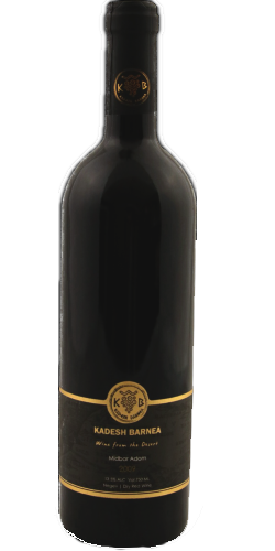 Masada Malbec - Vin cacher
